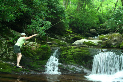 Charity fishes for brookies high in the Smoky Mountains