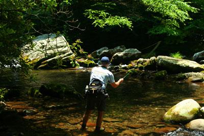 Fishing upstream of Elkmont, GSMNP