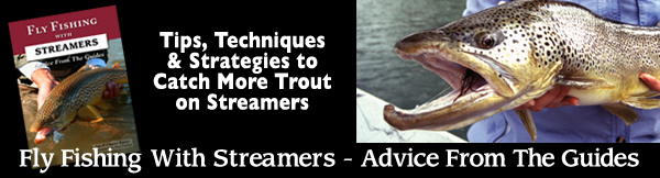 Fly Fishing with Streamers - Advice from the Guides