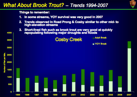 Brook Trout Population Graph for Cosby Creek, GSMNP
