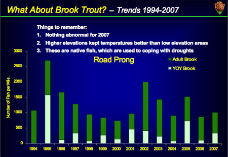 Brook Trout Population Graph for Road Prong, GSMNP