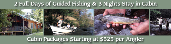 Cabin and Fly Fishing Package in Townsend, Tennesee