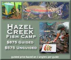 Hazel Creek fly fishing