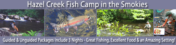 Fly Fishing Camp on Hazel Creek