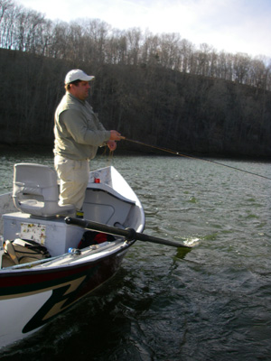 Fly Fishing the Holston River in Tennessee