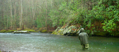 Fly Fisher in the Rain