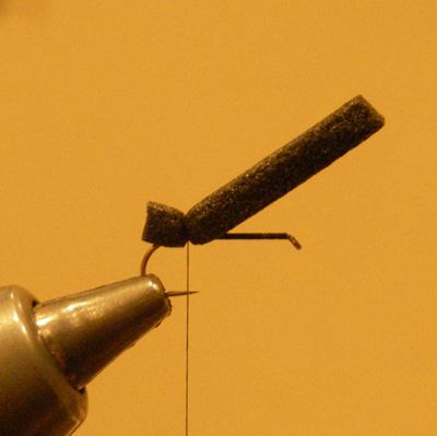 Elkmont Ant, Step 1