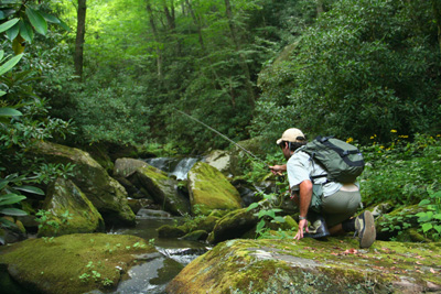 Ian Rutter fly fishing for brook trout, Great Smoky Mountains National Park