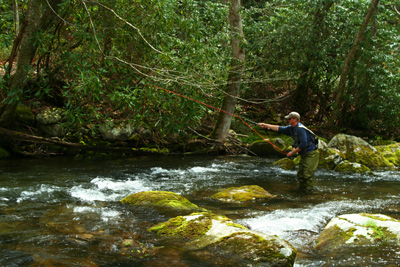Fly fisher on upper Little River, Great Smoky Mountains