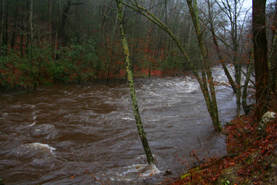 High Water on Little River 12-12-08