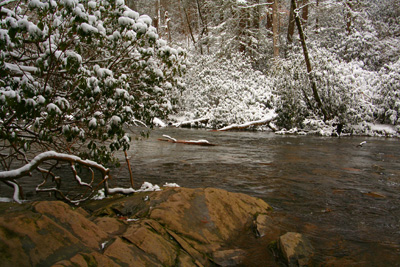 Snow on Abrams Creek