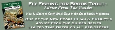 Fly Fishing for Brook Trout in GSMNP - Advice from the Guides