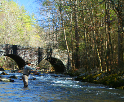 Doug Sanders fly fishes Little River, Great Smoky Mountains