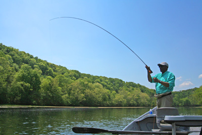 Michael Kennedy hooked up with a nice fish hooked on a dry fly from the drift boat