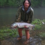 Monster Brown Trout from the Clinch River