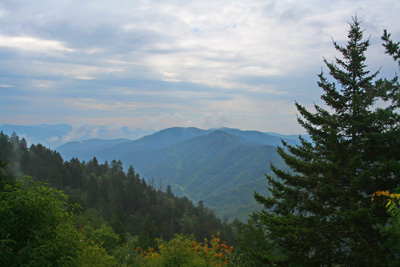 The Smokies were cool and overcast this weekend; perfect fishing conditions for fishing. We went another direction.