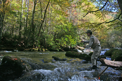 Fall is definitely one of the best times to fly fish in the Smoky Mountains