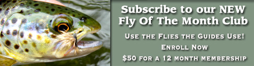 Fly of the Month Subscribe