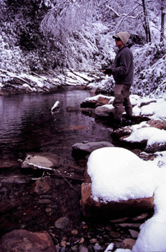 Fly fishing in the snow