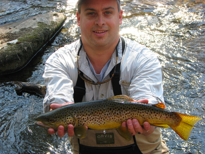 Andy Sonner's Brown Trout
