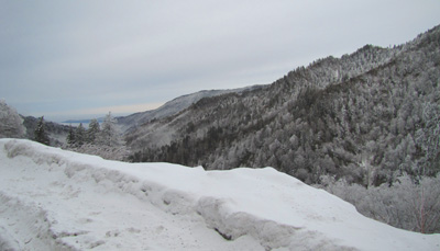 Snow on Newfound Gap Road