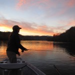 Video Fishing Report – Late November in the Smokies and the Clinch River