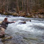 Water levels fall in the Smokies but increase on the Clinch