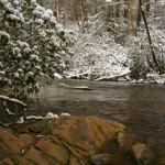 Video Fishing Report – Cold Weather Fly Fishing in the Smoky Mountains