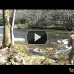 Video Fly Fishing Report – Early March 2011