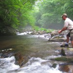 Superb Water Levels in Smoky Mountain Trout Streams