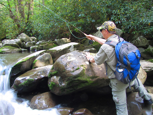 Fishing For Brookies in the Smokies
