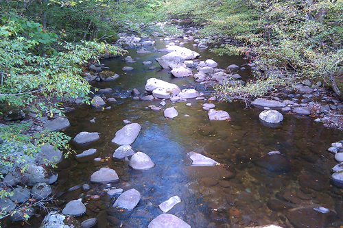 Smokies Stream During Drought Conditions