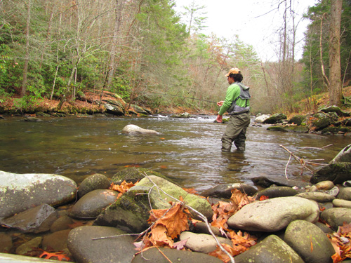 Fly Fishing Little River in the Smokies