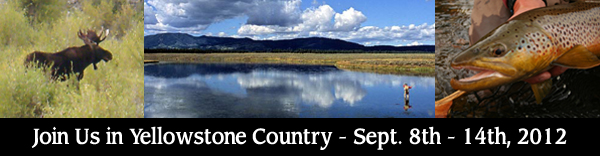Join us on the Henry's Fork & Yellowstone Country