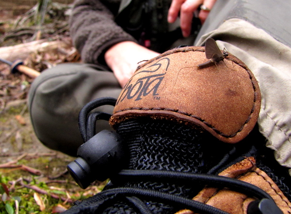 Quill Gordon mayfly on wading boot