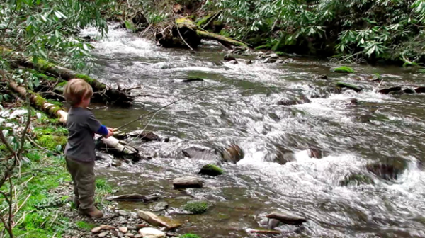 Boone Fly Fishes Rough Fork