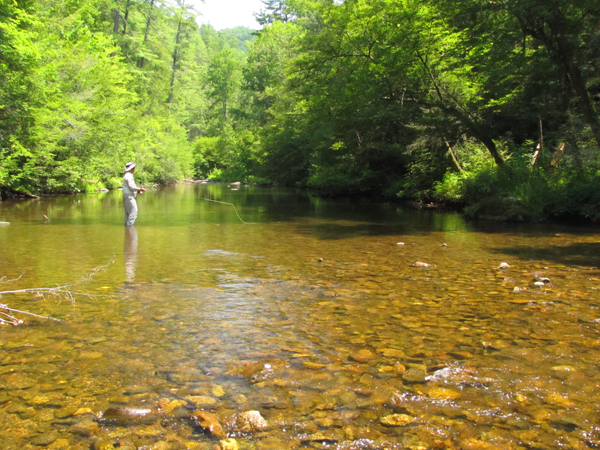 A fly fisher on a smallmouth bass stream in East Tennessee