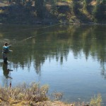 Wrap Up of Our Trip to the Henry's Fork & Yellowstone Park
