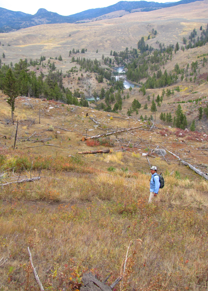 Yellowstone River Backcountry