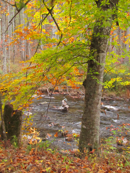Hazel Creek Fall Fishing Scene