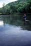 Charity Wades the Clinch River