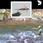 Fly of the Month –  Pat's Nymph