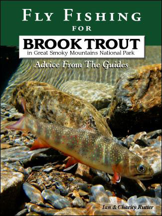 Fly fishing for brook trout in great smoky mountains for Smoky mountain fly fishing
