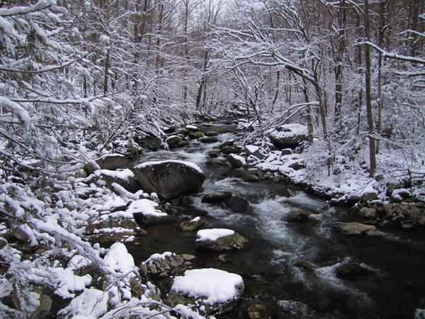 SnowyTremont1