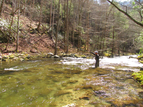 Fishing the Smokies on a spring day