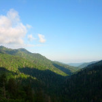 Smokies Overlook