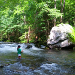 Water Conditions Improving in the Smoky Mountains