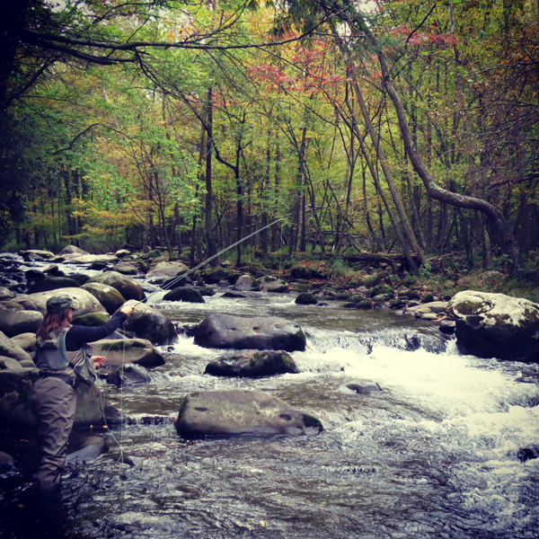 Fall At Elkmont in the Smokies