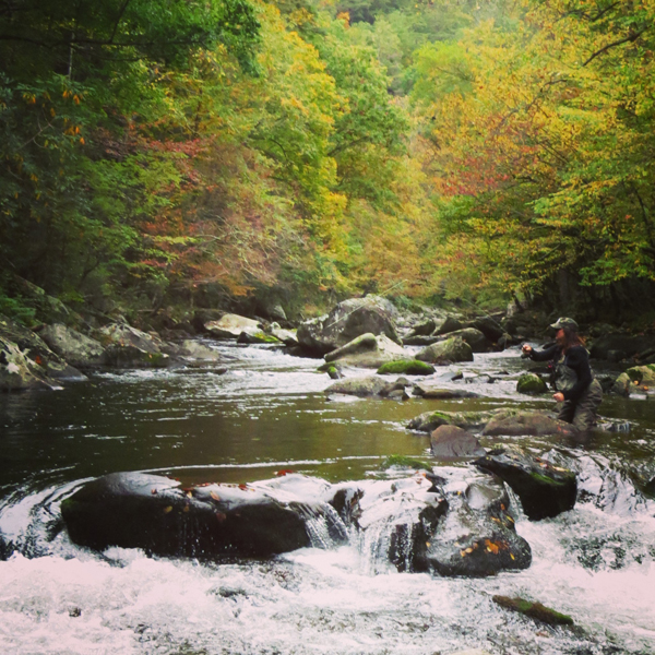 Fall Hook Up On Little River