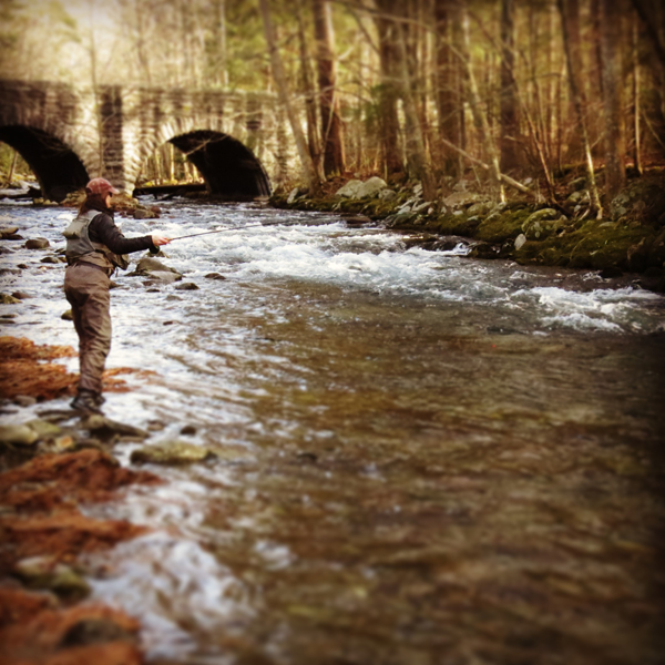 Fly Fishing Elkmont in Winter
